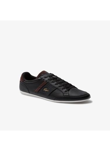 Lacoste Erkek Oxford Ayakkabı 1LCSM2021004 Renkli